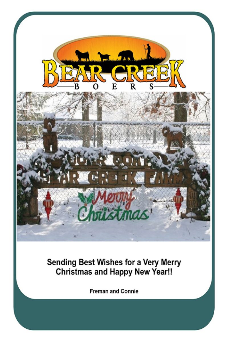 Bear Creek Merry Christmas 2017 - Boer Goat Buck